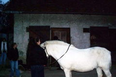 02_15-12-2005