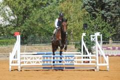 07_concours-equestre-hippocrene-2011